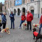De Kortrijkse Schepen van Welzijn Philippe De Coene in gesprek met ons team