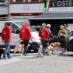 Een groep van instructeurs, honden, vrijwilligers en gebruiker lopen door de straat