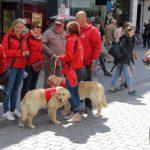 De groep van Vrienden der Blinden staat te overleggen in een winkelstraat te Kortrijk