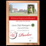 Meterschapscertificaat Lions Club Waregem