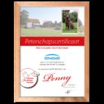 peterschapscertificaat penny in samenwerking met engie electrabel