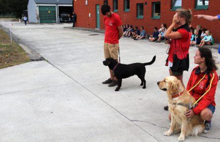 de blindnegeleidehonden blijven zitten bij de instructeurs