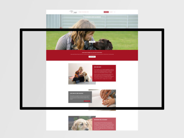 De afbeelding toont een screenshot van het platform Koalect.
